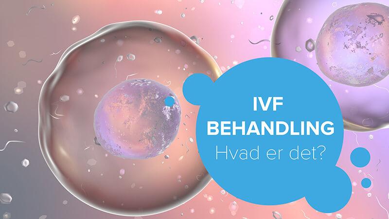 IVF behandling hvad er det