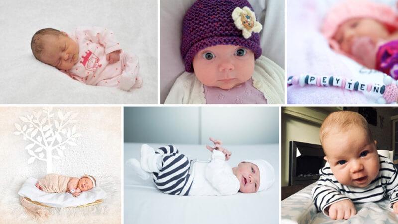 Babybilleder af Cryos donorbørn