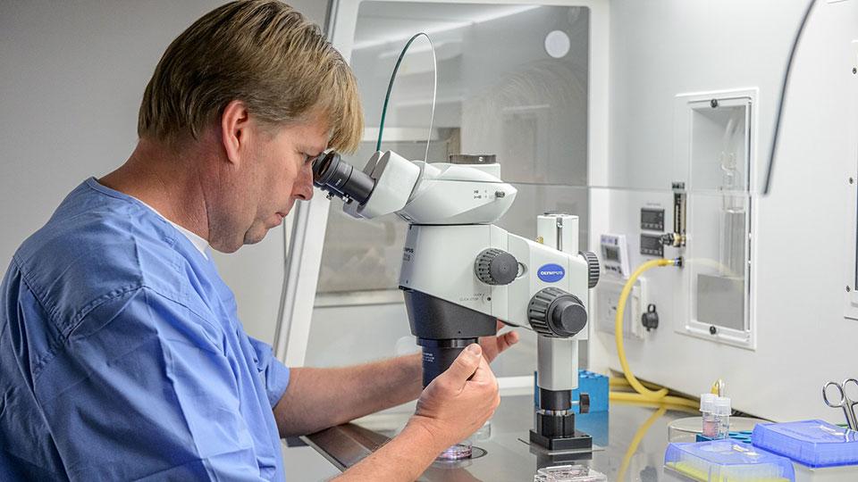 Forskere hos Cryos har i et studie undersøgt om Corona kan overføres via sæd