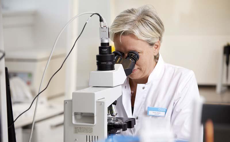 Cryos laboratory employee testing donor sperm health through a microscope