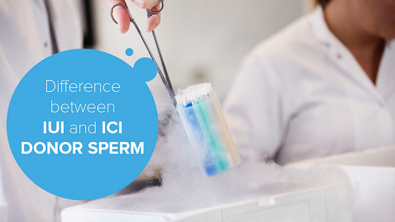 The difference between IUI and ICI sperm straws