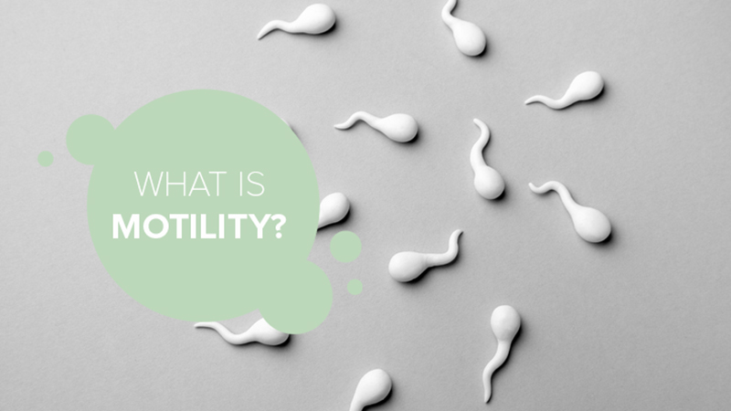 MOT or motility is a way to describe sperm quality