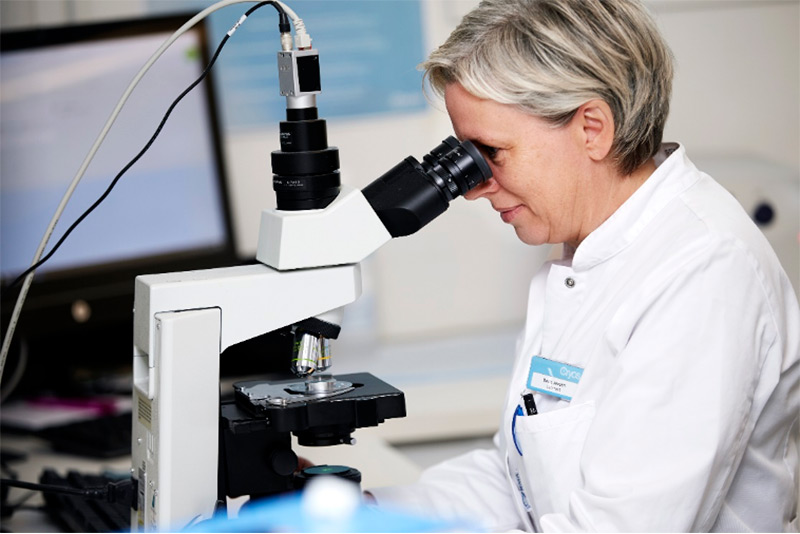 Cryos employee in the lab looking at sperm in microscope