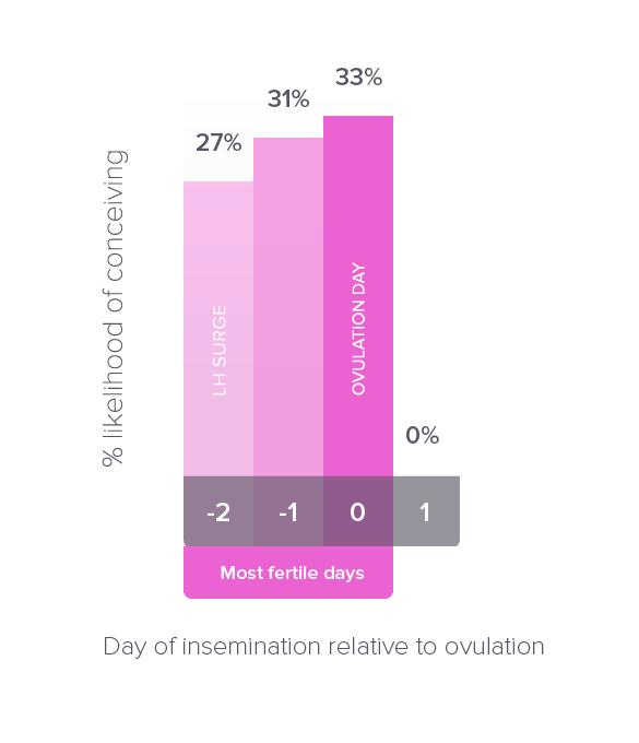 Ovulation infograph