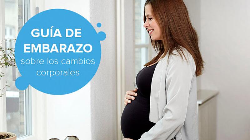 Guía de embarazo sobre los cambios corporales