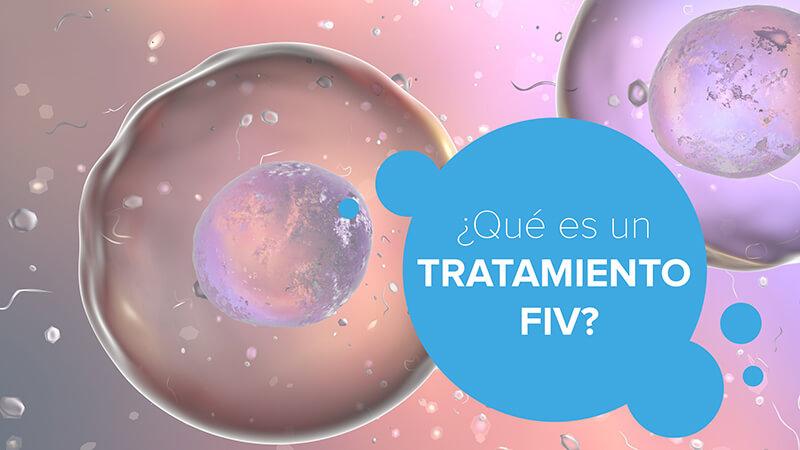 ¿Qué es un tratamiento FIV?