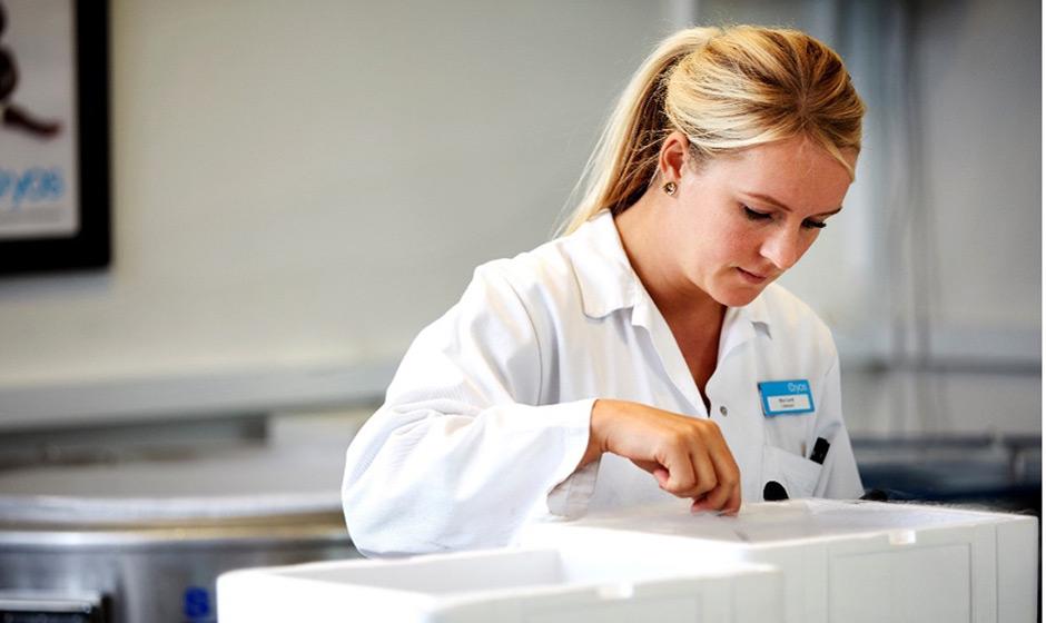 Employée de Cryos préparant des paillettes de sperme pour les cliniques. Manipulation sûre de sperme de haute qualité Cryos