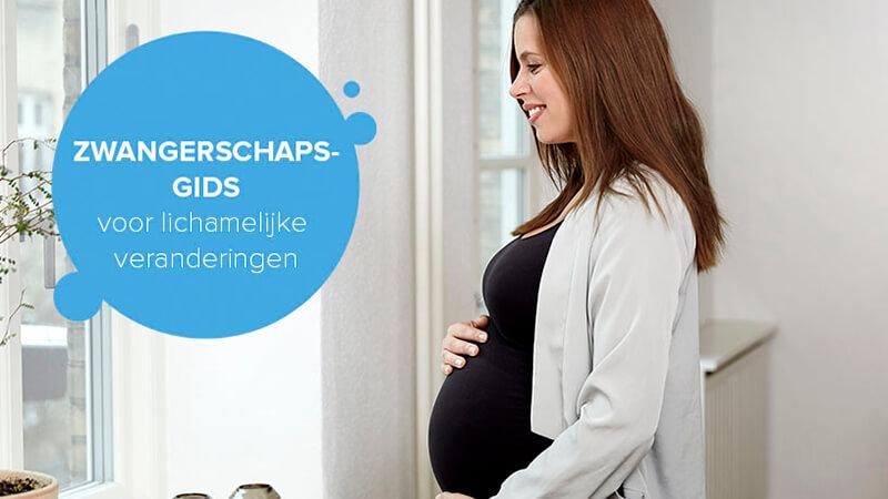 Zwangerschapsgids