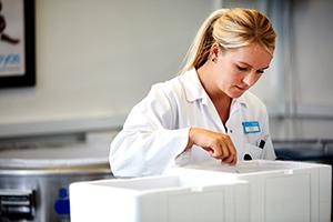 Uma funcionária do laboratório da Cryos a examinar palhetas de esperma – Fotografia do kit de imprensa da Cryos.