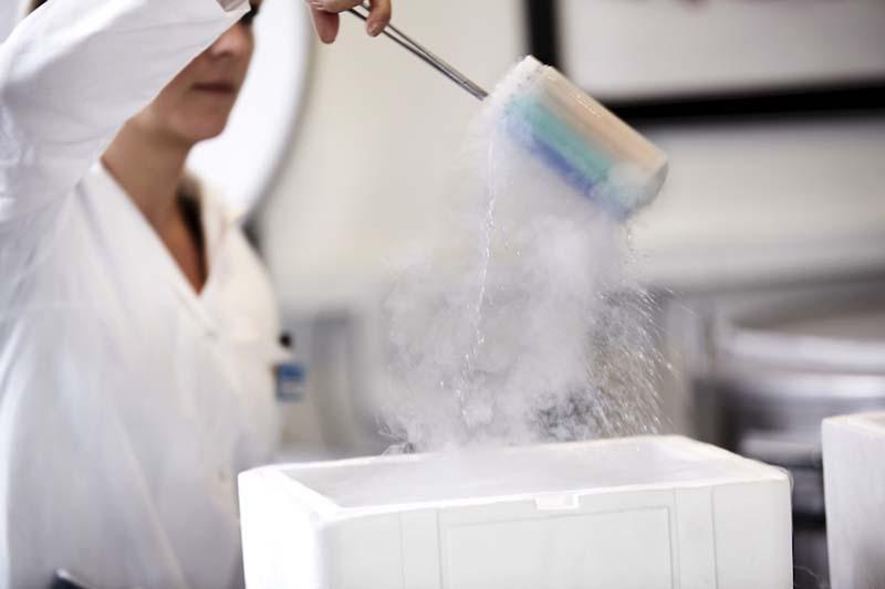 捐献者精子以 -196 度储存在 Cryos 的液氮罐中